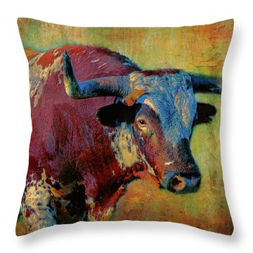 Hook 'em 2 Throw Pillow by Colleen Taylor