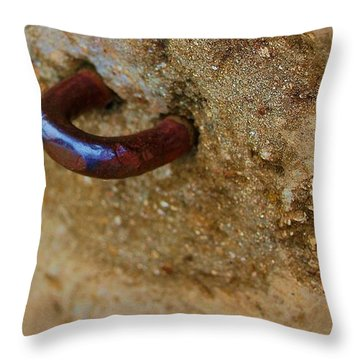 Hooked Throw Pillow by Debbi Granruth