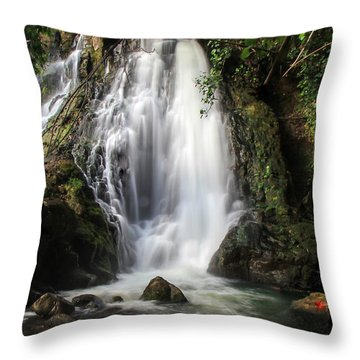 Hoopii Falls Throw Pillow