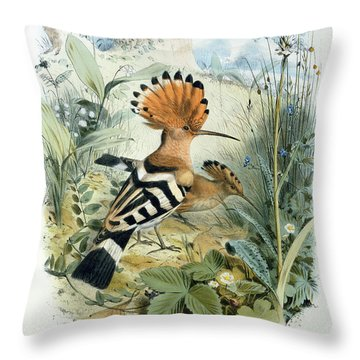 Hoopoe Throw Pillow