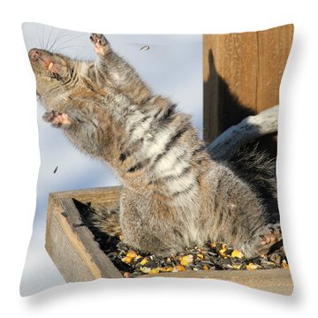 Hooray I've Found The Jackot Throw Pillow