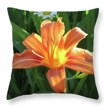Hooray Summers Here Throw Pillow