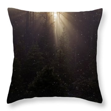 Hope And Faith - Winter Art Throw Pillow