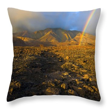 Hope From Desolation Throw Pillow by Mike  Dawson