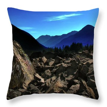Throw Pillow featuring the photograph Hope by John Poon