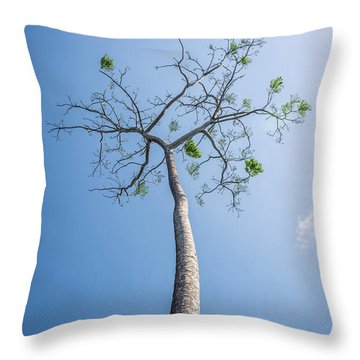 Hope Throw Pillow by Lana Enderle