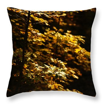Hope Leaves Throw Pillow by Linda Shafer