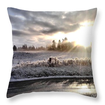 Hope  Throw Pillow by Rory Sagner