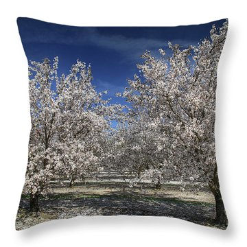 Hopes And Dreams Throw Pillow by Laurie Search
