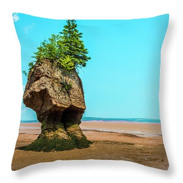 Hopewell Rocks In New Brunswick -  Canada Throw Pillow