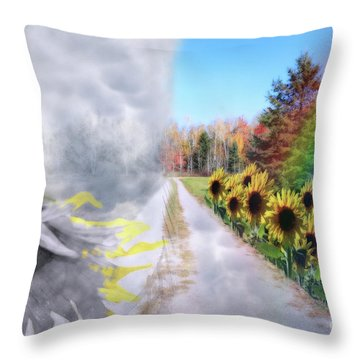 Hoping For A Better Life Throw Pillow by Cathy  Beharriell