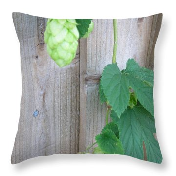 Hops On Fence Throw Pillow