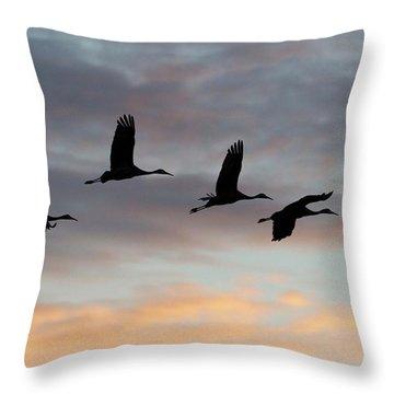 Horicon Marsh Cranes #1 Throw Pillow