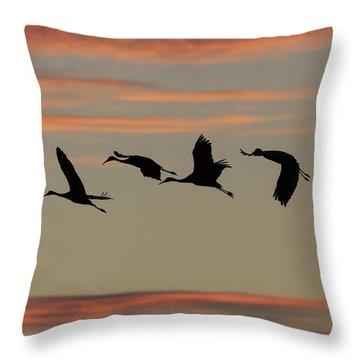 Horicon Marsh Cranes #2 Throw Pillow