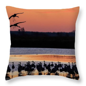 Horicon Marsh Cranes #5 Throw Pillow