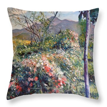 Horingberg Horn Mountain Eastern Cape South Africa Throw Pillow by Enver Larney