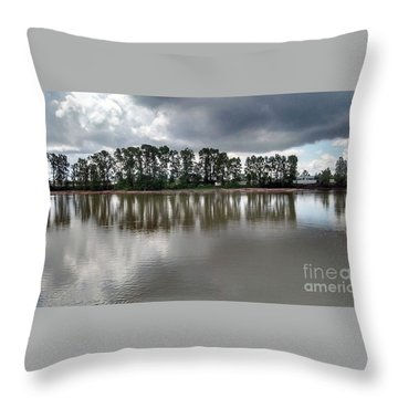 Horizon Line Throw Pillow