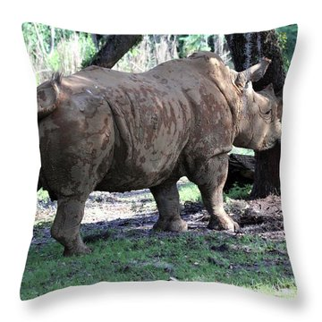 Horn Rubbing Throw Pillow by Mary Haber
