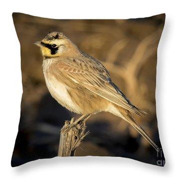 Horned Lark Throw Pillow