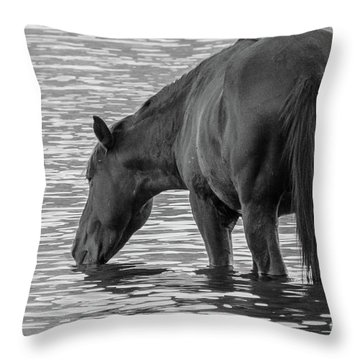Horse 5 Throw Pillow