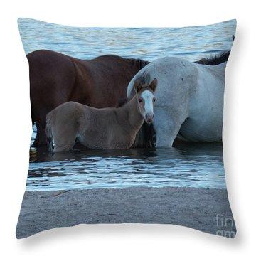 Horse 9 Throw Pillow