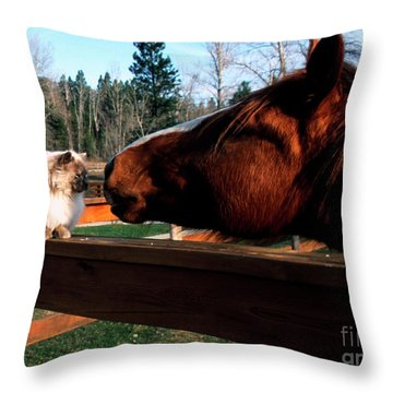 Horse And Cat Nuzzle Throw Pillow by Thomas R Fletcher