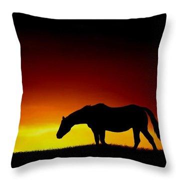 Horse At Sunset Throw Pillow
