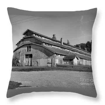 Horse Barn Exited Throw Pillow
