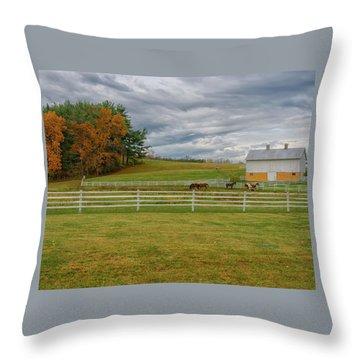 Horse Barn In Ohio  Throw Pillow