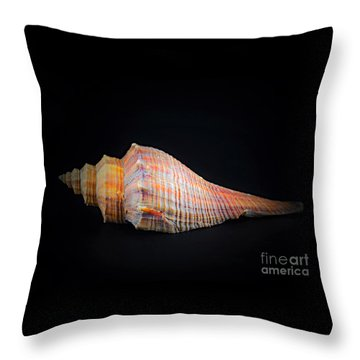 Horse Conch Throw Pillow