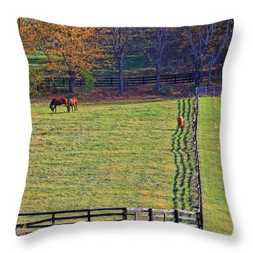 Horse Country # 2 Throw Pillow