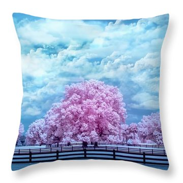 Throw Pillow featuring the photograph Horse Country In Pink by Louis Ferreira