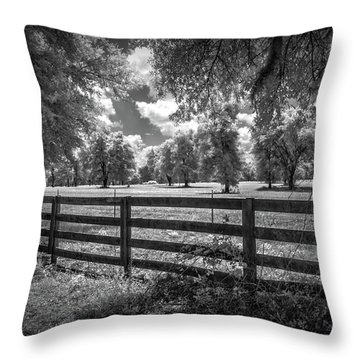 Throw Pillow featuring the photograph Horse Country by Louis Ferreira