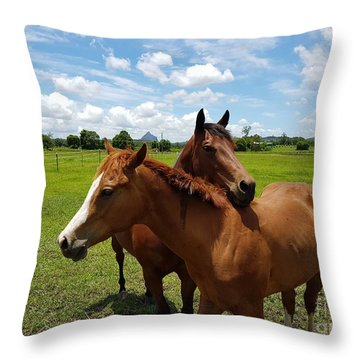 Horse Cuddles Throw Pillow