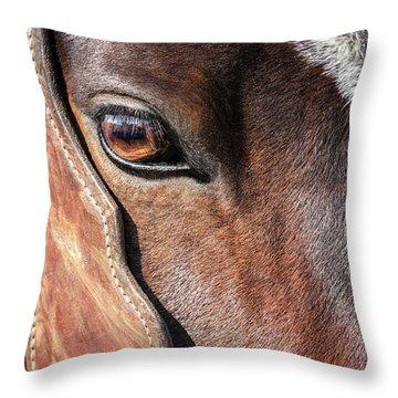 Horse Eye Throw Pillow