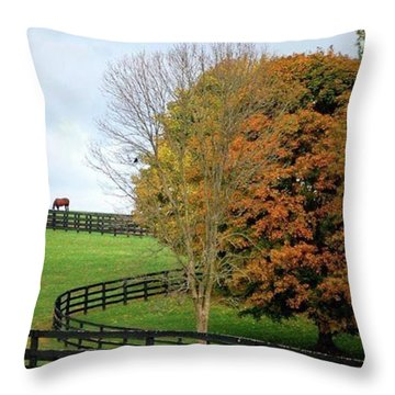 Horse Farm Country In The Fall Throw Pillow