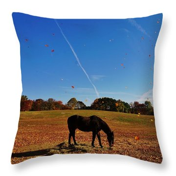 Horse Farm In The Fall Throw Pillow by Ed Sweeney
