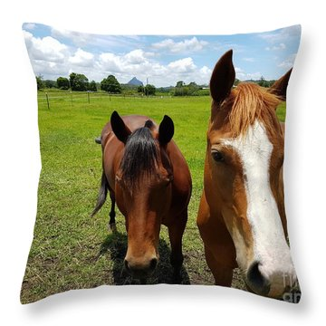 Horse Friendship Throw Pillow