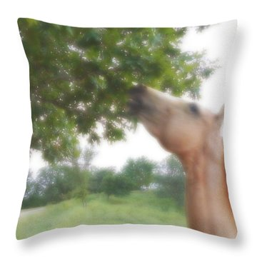 Throw Pillow featuring the digital art Horse Grazes In A Tree by Jana Russon