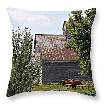 Horse Haven Throw Pillow