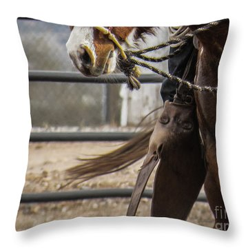 Horse In Hackamore Throw Pillow