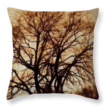 Horse In The Willows Throw Pillow