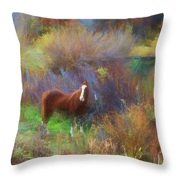 Horse Of Many Colors Throw Pillow