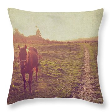 Throw Pillow featuring the photograph Horse by Lyn Randle