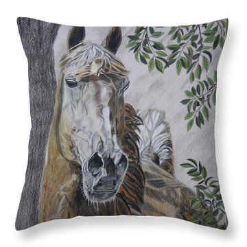 Horse Throw Pillow by Melita Safran
