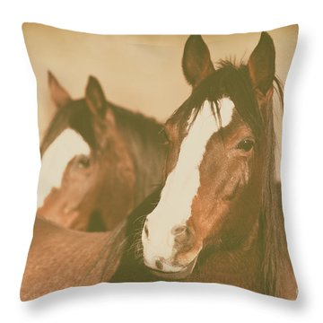 Throw Pillow featuring the photograph Horse Portrait by Ana V Ramirez