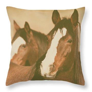 Horse Portrait Throw Pillow by Ana V Ramirez