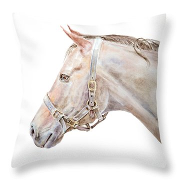 Throw Pillow featuring the painting Horse Portrait I by Elizabeth Lock