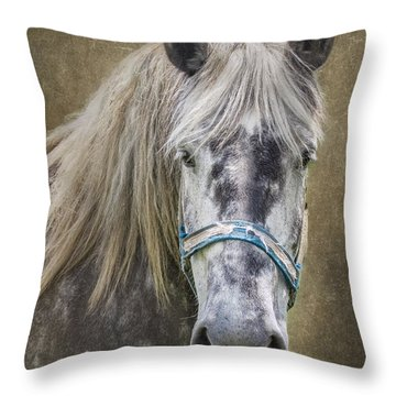 Horse Portrait I Throw Pillow
