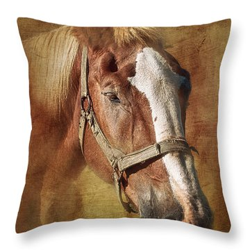 Horse Portrait II Throw Pillow